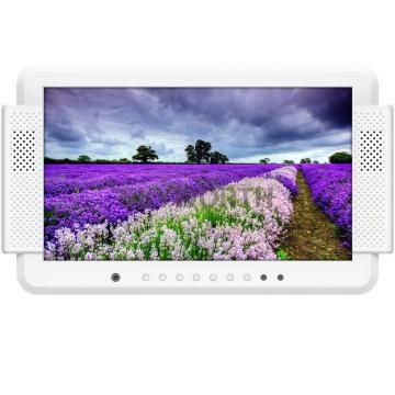 13.3 inch mobile digital TV display